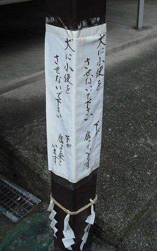 00213.jpg