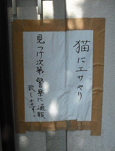 00259.jpg