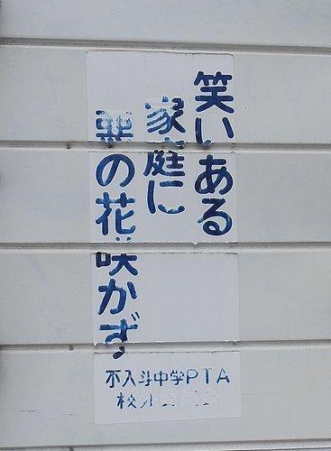 00453.jpg