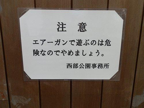 00455.jpg