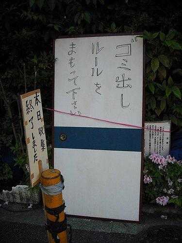 00241.jpg